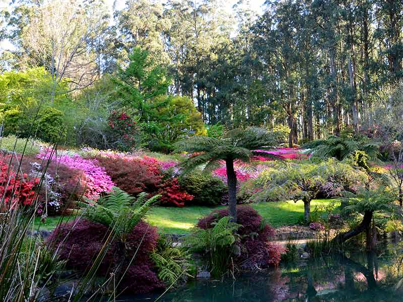 Business-Function-Event-Venue-Dandenongs